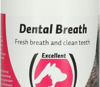 Dental Breath